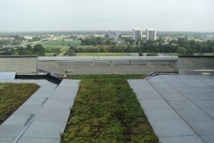 Green-Roof4