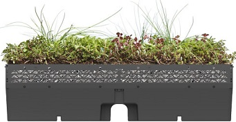 Green Roofing Systems Vegetation Options